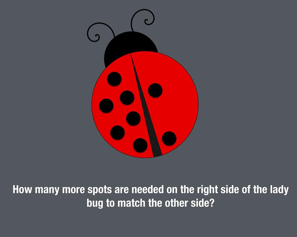 Ladybug Symmetry